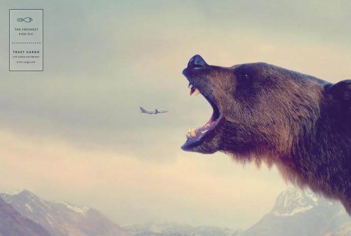 Trust Cargo International: Bear