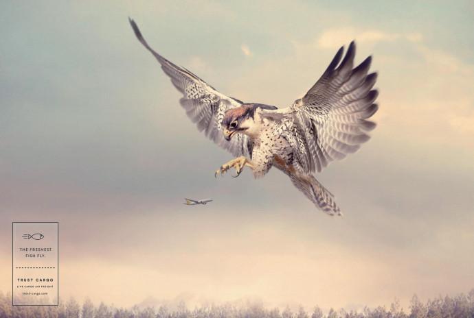 Trust Cargo International: Falcon
