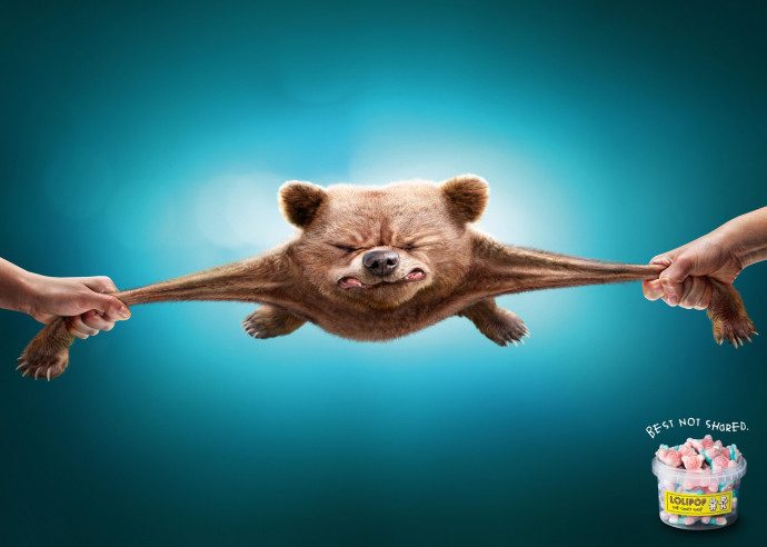 Lolipop: Bear
