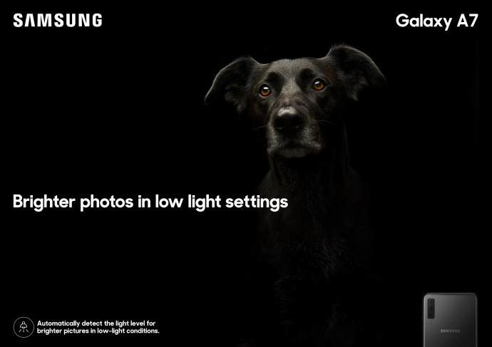 Galaxy A7 Feature: Dog