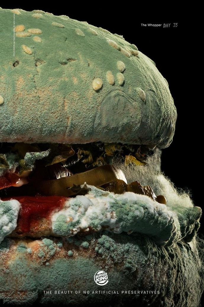 Burger King: The Moldy Whopper, Day 35