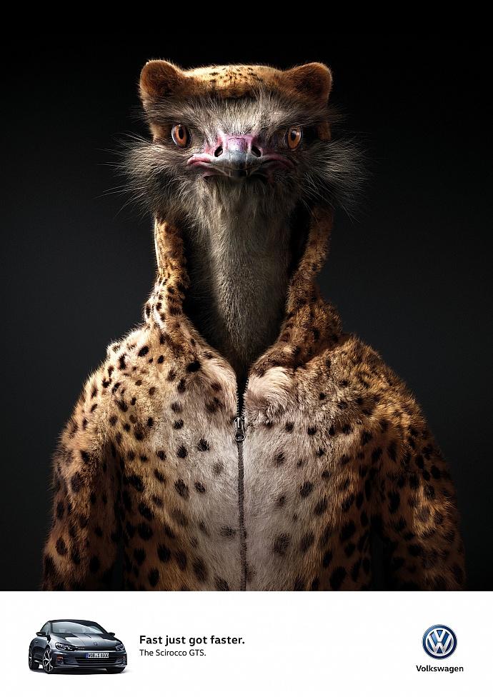 Volkswagen: Ostrich