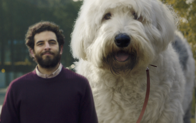 Ad of the Day | Skoda and Rosapark Present Doug The Dog, Man's (Biggest) Best Friend