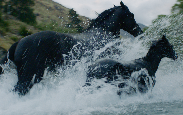 """Ad of the Day 