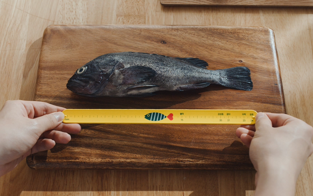 Ad of the Day | A new campaign by Cheil supports conservation of fishery resources